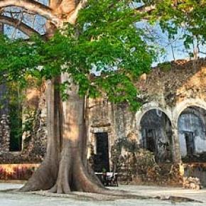 Las Haciendas de Yucatan